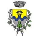 Novafeltria